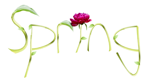 Spring text illustration