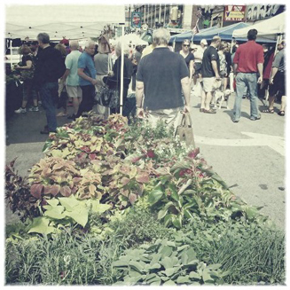 Chicago's Division Street Farmers Market