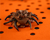 Chocolate coated pecan-caramel spiders