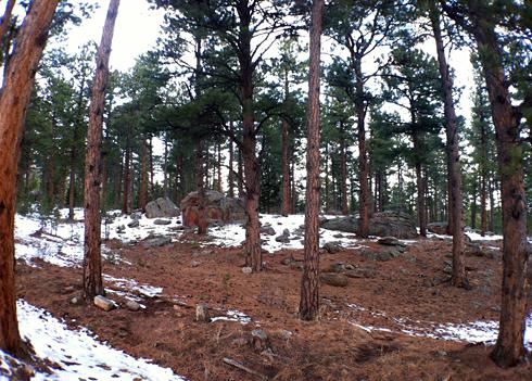 North Fork Shanahan Trail