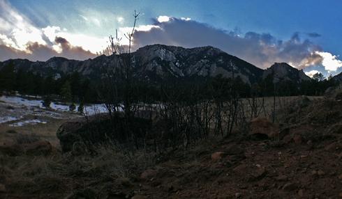 Bear Peak from North Fork Shanahan Trail