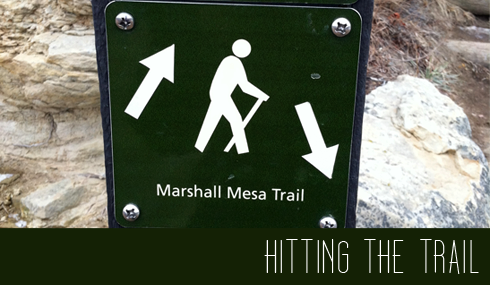 Marshall Mesa Trail
